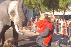 elefanti-casselly-25-montecarlo2