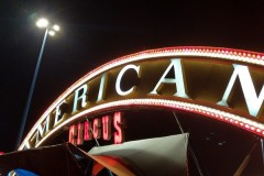 American Circus (fam. Togni) sp