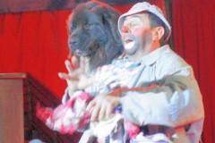 Apollo (soc. Anselmi + Rossi) Nova Gorica 25-04-09 Ermanis sp
