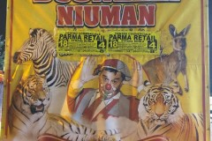 Busnelli NIuman Parma 21-09-20