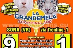 circo Busnelli Niuman Verona 2020