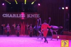 Charles-Knie_10