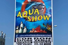 circo-italiano-bonaccini-acquatico-romania-jurgen-bonaccini-2021-foto-enzinger-07