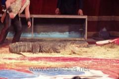 di Barcellona Franchetti Busto Arsizio 13-03-04 Vanoli sp