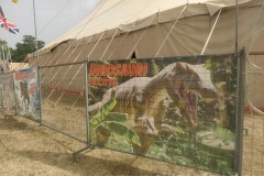 Dinosauri-D.-Canestrelli14