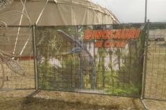 Dinosauri-D.-Canestrelli15