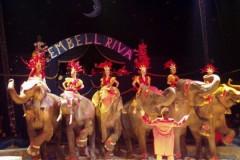 Embell Riva R. e M. Bellucci Milano 2004 Vanoli sp