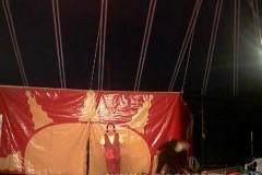 Fantasia Du Soleil frat Coussadiè Chieve 12-02-06 Lombardo sp