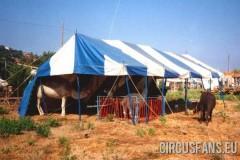 circo-fantasy-rossante-porto-ercole-1985-18