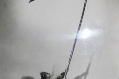 Gallingani Francesca ar