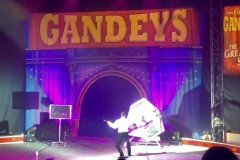 Gandey2019