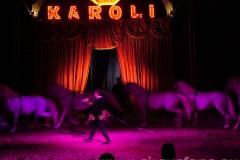 Karoli F. Rossi + E. Caroli sp
