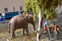 elefante-zoo