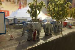 elefanti-in-uscita