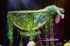 cirque-mystike-terragona-2021-payaso-enrico-04