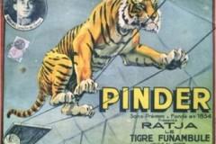 Pinder ps