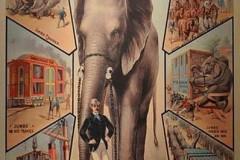 circus,vintage poster