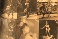 Renata-Riva-giocoliera-a-cavallo