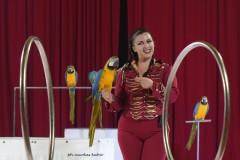 circo-romina-orfei-2021-castello-cisterna-dellacalce-circusfans-041