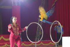 circo-romina-orfei-2021-castello-cisterna-dellacalce-circusfans-043
