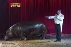 circo-romina-orfei-2021-castello-cisterna-dellacalce-circusfans-055