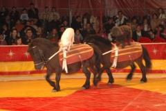 sezar-sirki-ankara-gennaio-2007-coda-prin-turchia-10-jenny-bizzarro