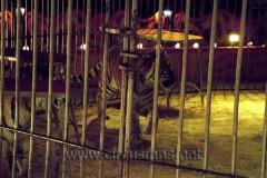 Supercircus fam. A Orfei Como 27-12-04 Vanoli sp