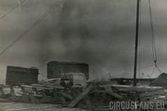 07-circo-marino-alaska-texas-archivio-cantoro-027