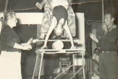 08-circo-marino-alaska-texas-archivio-cantoro-037