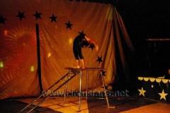 Torres fam. Torregrossa Città di Castello 01-011-09 Piccioli sp