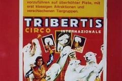 Tribertis ps