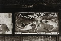 014-victor-squalo-show