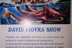 015-david-piovra-show-02