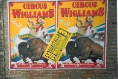 WIGLIAMS1-