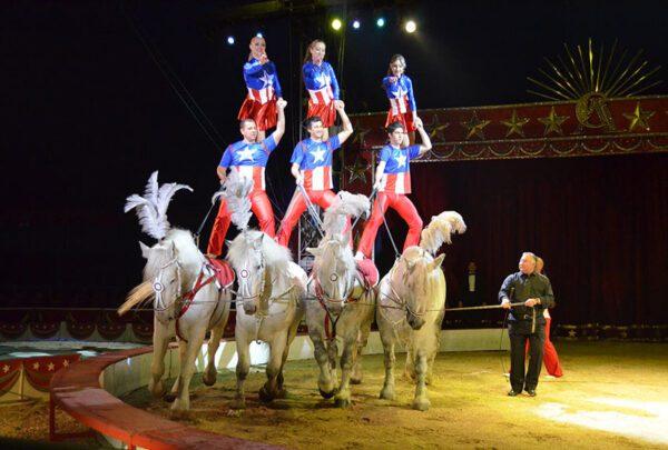 18/11/2003: 2° Festival del Circo di Grenoble: Gli spettacoli di selezione
