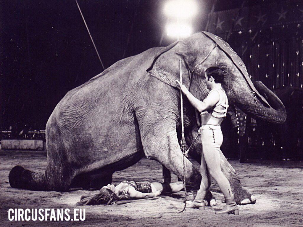 Stampa: Morto Willy Togni, fondò il Circo Americano