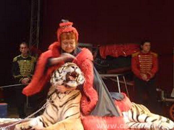 Maximova al circo Martin Show