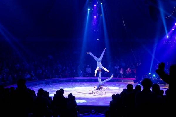 Il circo Knie vuole ritornare a Locarno