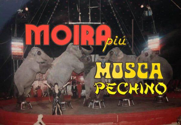 MOIRA ORFEI + CIRCO DI MOSCA E PECHINO - IL CIRCO ENTRA IN CASA