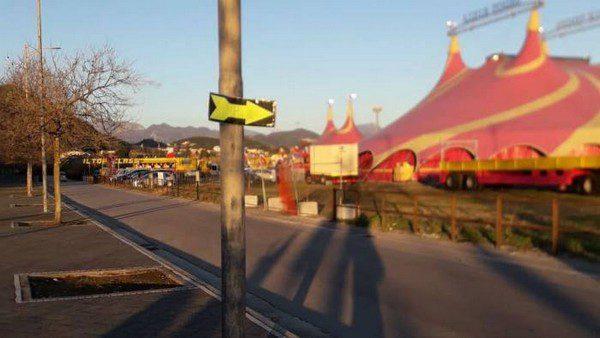 Nessun rischio per il circo, controllate strutture e animali