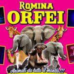 CIRCO ROMINA ORFEI – IL CIRCO ENTRA IN CASA