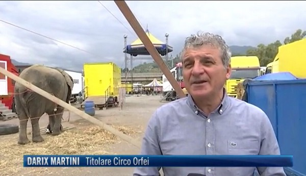 Coronavirus. Il Circo Darix Martini al TG4 Mediaset