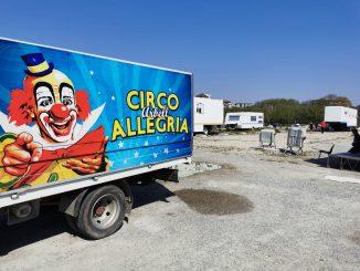 Milano: coronavirus, l'ora del pasto per le tigri del circo Arbell in quarantena