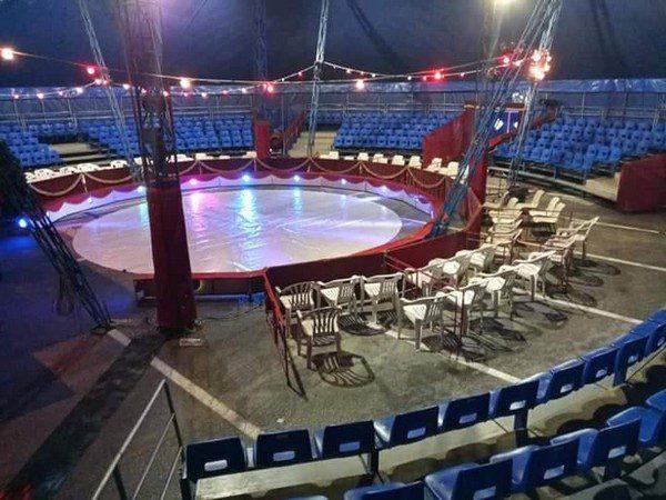 Circo Zavatta in Grecia