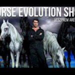 HORSE EVOLUTION SHOW FLORIAN RICHTER - IL CIRCO ENTRA IN CASA
