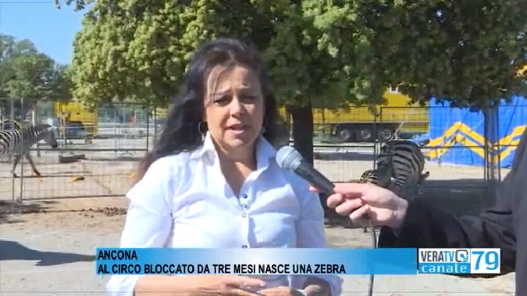 TAMARA BIZZARRO A VERATV: Video