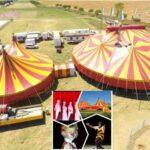 Il Circo Busnelli-Niuman riapre a capienza dimezzata