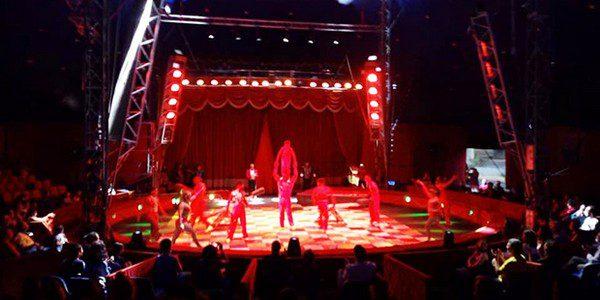 Circo M. Orfei di Darix Martini