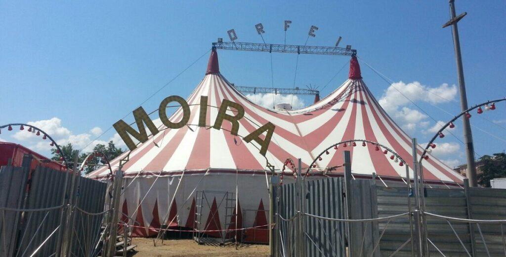 """Il responsabile del circo Montemagno / Moira Orfei: """"Siamo fermi. Non so quanto resisteremo"""""""