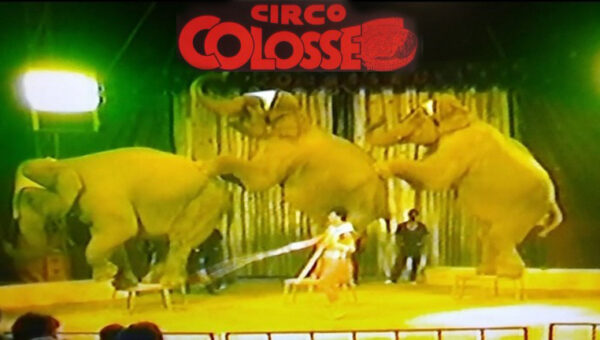 circo Colosseo